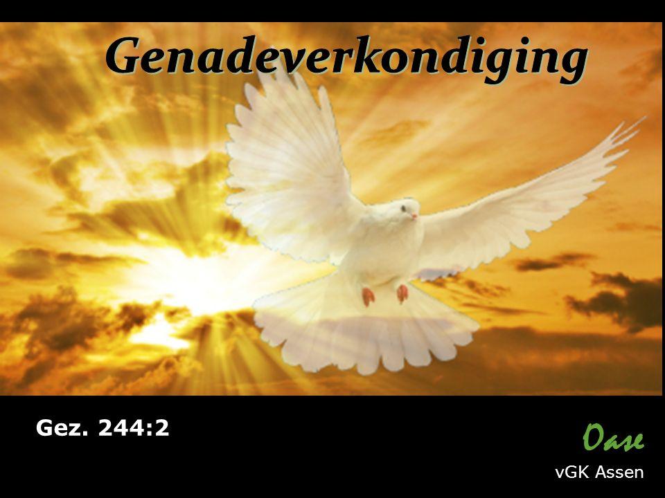 Oase vGK Assen Gez. 244:2