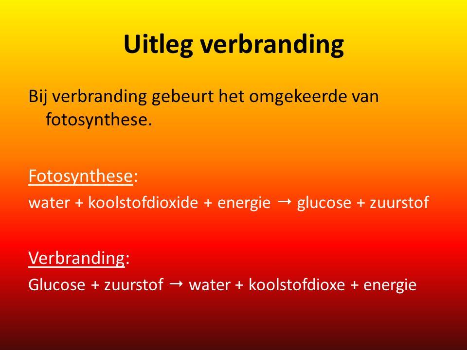 Uitleg verbranding Bij verbranding gebeurt het omgekeerde van fotosynthese. Fotosynthese: water + koolstofdioxide + energie  glucose + zuurstof Verbr