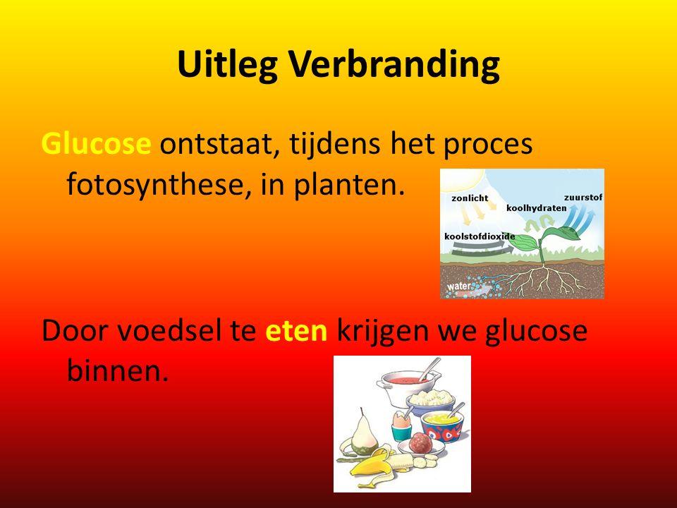 Uitleg Verbranding Glucose ontstaat, tijdens het proces fotosynthese, in planten. Door voedsel te eten krijgen we glucose binnen.