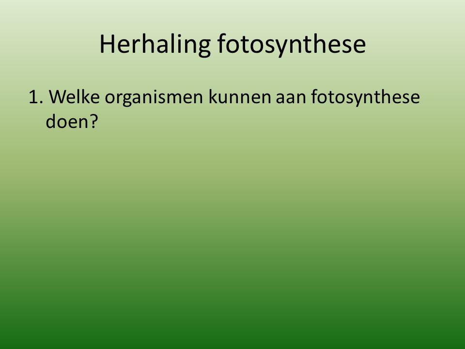 Herhaling fotosynthese 1. Welke organismen kunnen aan fotosynthese doen?