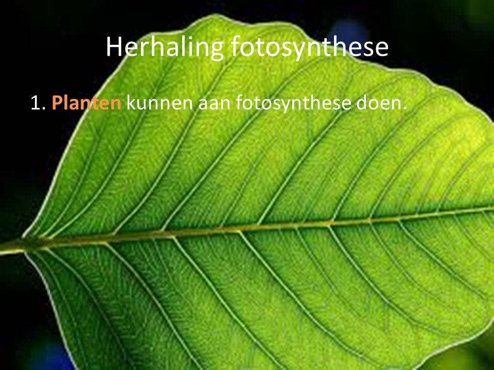 Uitleg verbranding Zuurstof is een gas en bevindt zich in de lucht.
