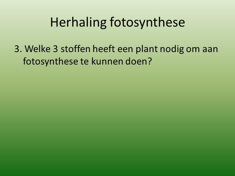 Herhaling fotosynthese 3. Welke 3 stoffen heeft een plant nodig om aan fotosynthese te kunnen doen?