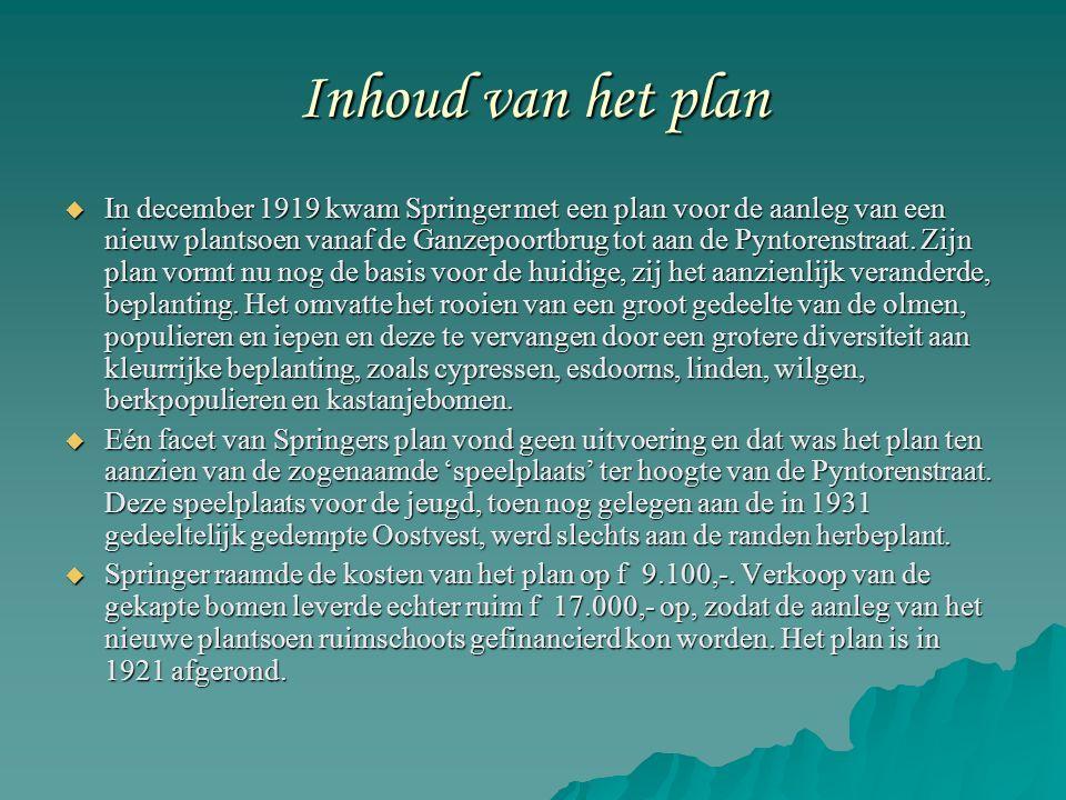 Inhoud van het plan  In december 1919 kwam Springer met een plan voor de aanleg van een nieuw plantsoen vanaf de Ganzepoortbrug tot aan de Pyntorenstraat.