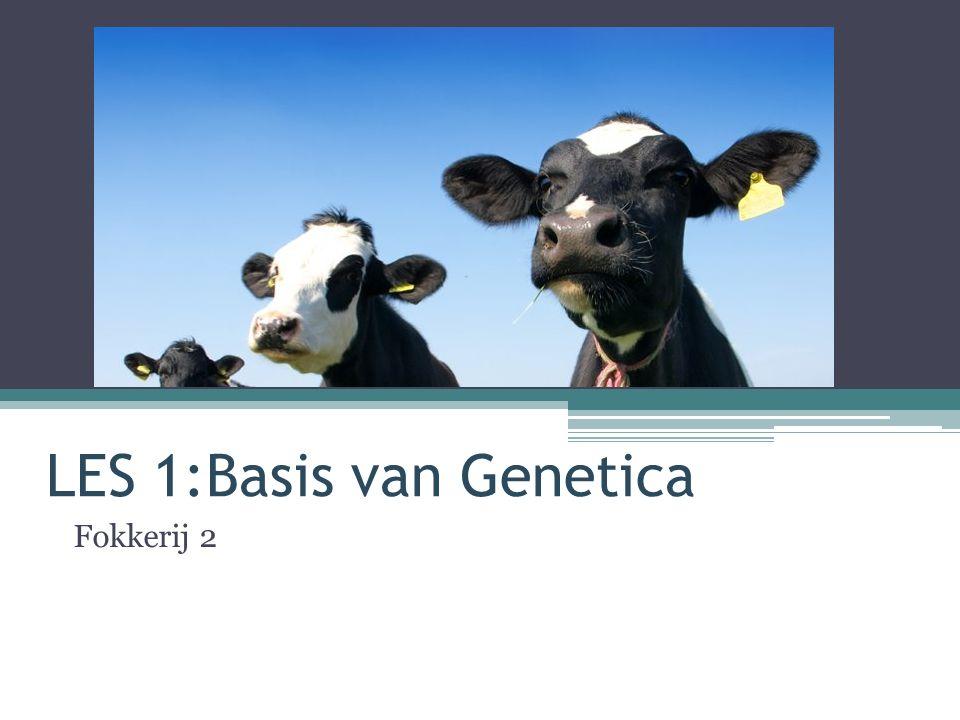 LES 1:Basis van Genetica Fokkerij 2