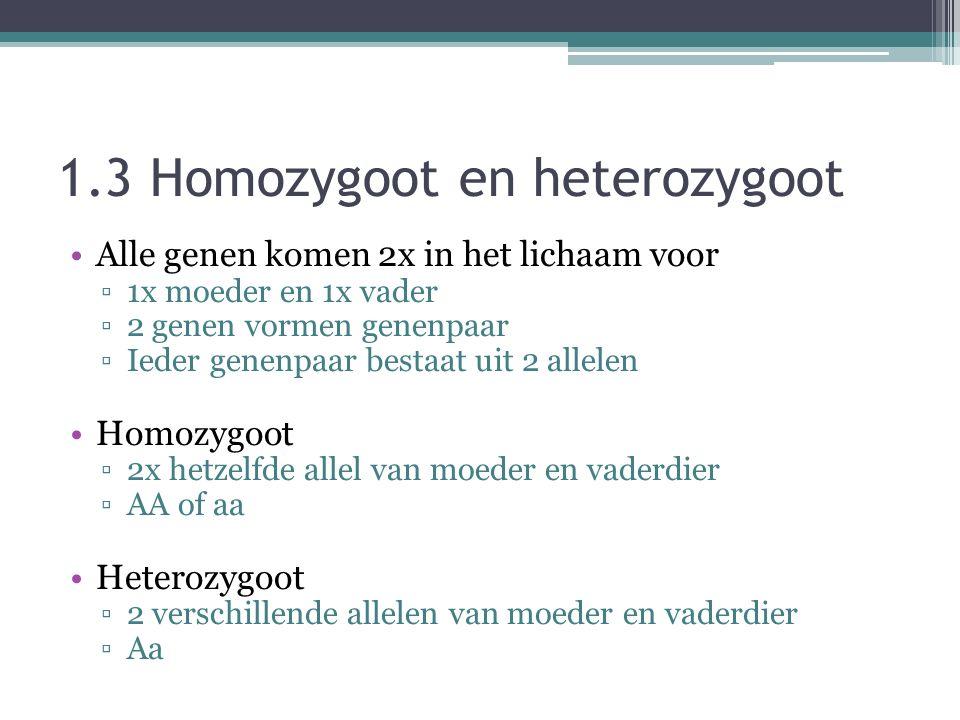 1.3 Homozygoot en heterozygoot Alle genen komen 2x in het lichaam voor ▫1x moeder en 1x vader ▫2 genen vormen genenpaar ▫Ieder genenpaar bestaat uit 2 allelen Homozygoot ▫2x hetzelfde allel van moeder en vaderdier ▫AA of aa Heterozygoot ▫2 verschillende allelen van moeder en vaderdier ▫Aa