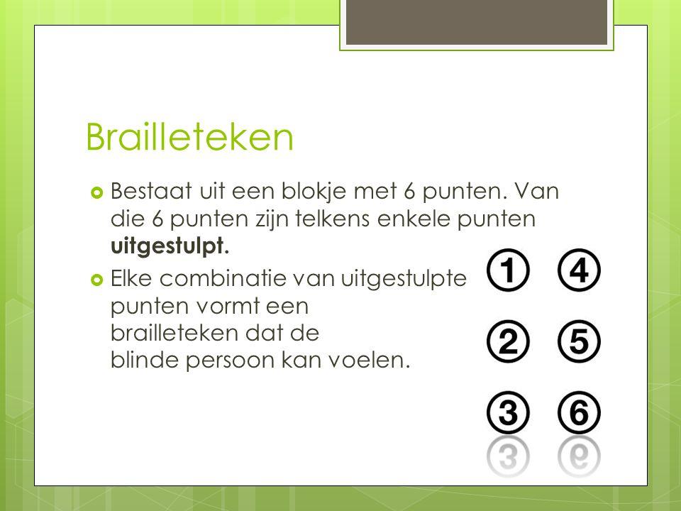 Brailleteken  Bestaat uit een blokje met 6 punten.