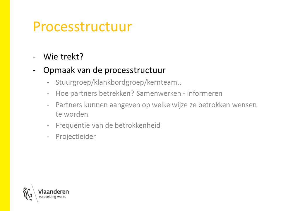Processtructuur -Wie trekt. -Opmaak van de processtructuur -Stuurgroep/klankbordgroep/kernteam..
