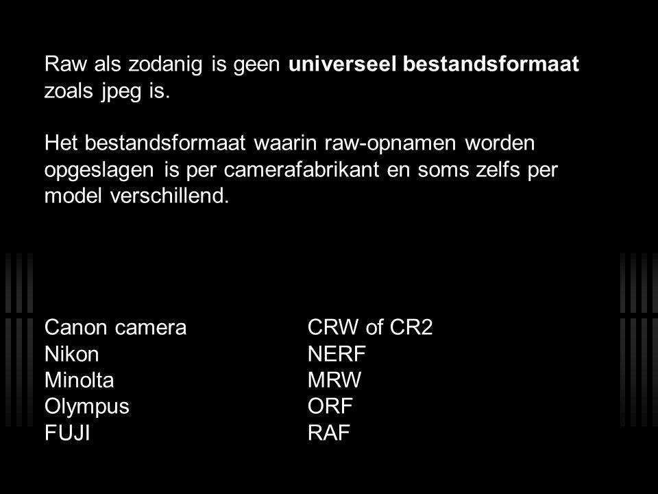 Raw als zodanig is geen universeel bestandsformaat zoals jpeg is. Het bestandsformaat waarin raw-opnamen worden opgeslagen is per camerafabrikant en s