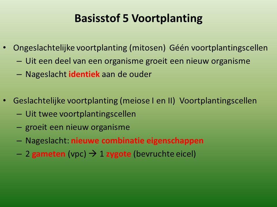 Basisstof 5 Voortplanting Ongeslachtelijke voortplanting (mitosen) Géén voortplantingscellen – Uit een deel van een organisme groeit een nieuw organis
