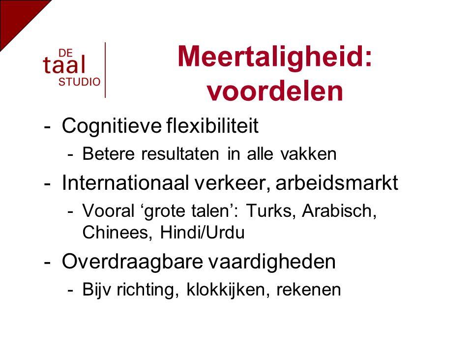 -Cognitieve flexibiliteit -Betere resultaten in alle vakken -Internationaal verkeer, arbeidsmarkt -Vooral 'grote talen': Turks, Arabisch, Chinees, Hindi/Urdu -Overdraagbare vaardigheden -Bijv richting, klokkijken, rekenen Meertaligheid: voordelen