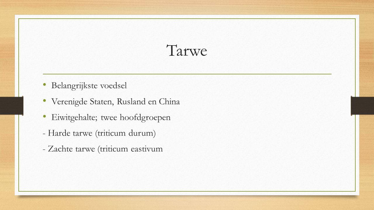 Tarwe Belangrijkste voedsel Verenigde Staten, Rusland en China Eiwitgehalte; twee hoofdgroepen - Harde tarwe (triticum durum) - Zachte tarwe (triticum eastivum