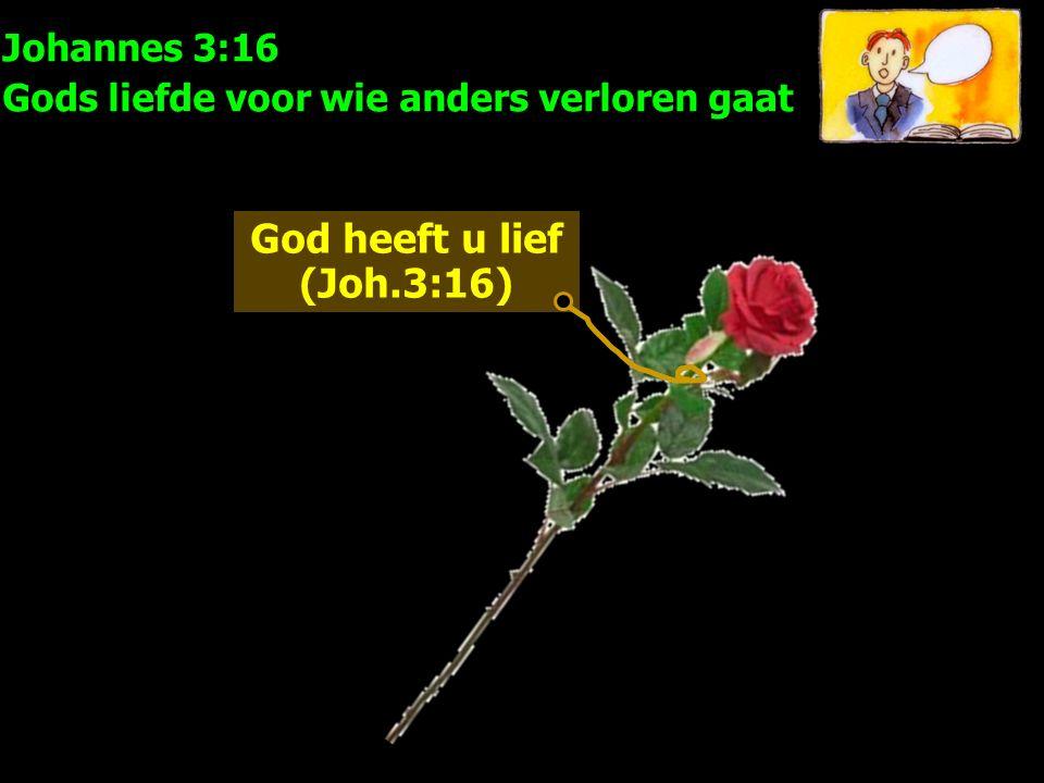 Johannes 3:16 Gods liefde voor wie anders verloren gaat God heeft u lief (Joh.3:16)