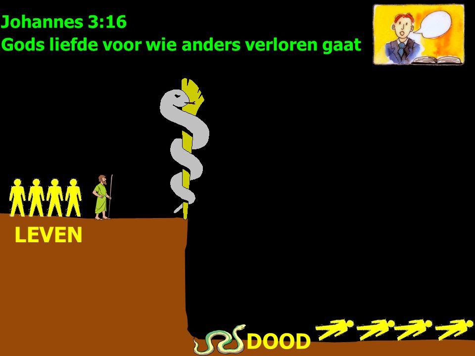 LEVEN DOOD Johannes 3:16 Gods liefde voor wie anders verloren gaat