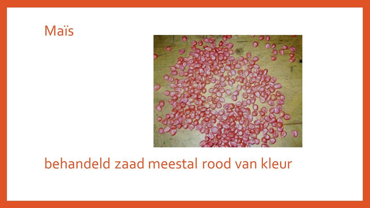 Maïs behandeld zaad meestal rood van kleur