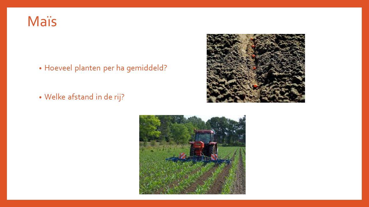 Maïs Hoeveel planten per ha gemiddeld? Welke afstand in de rij?