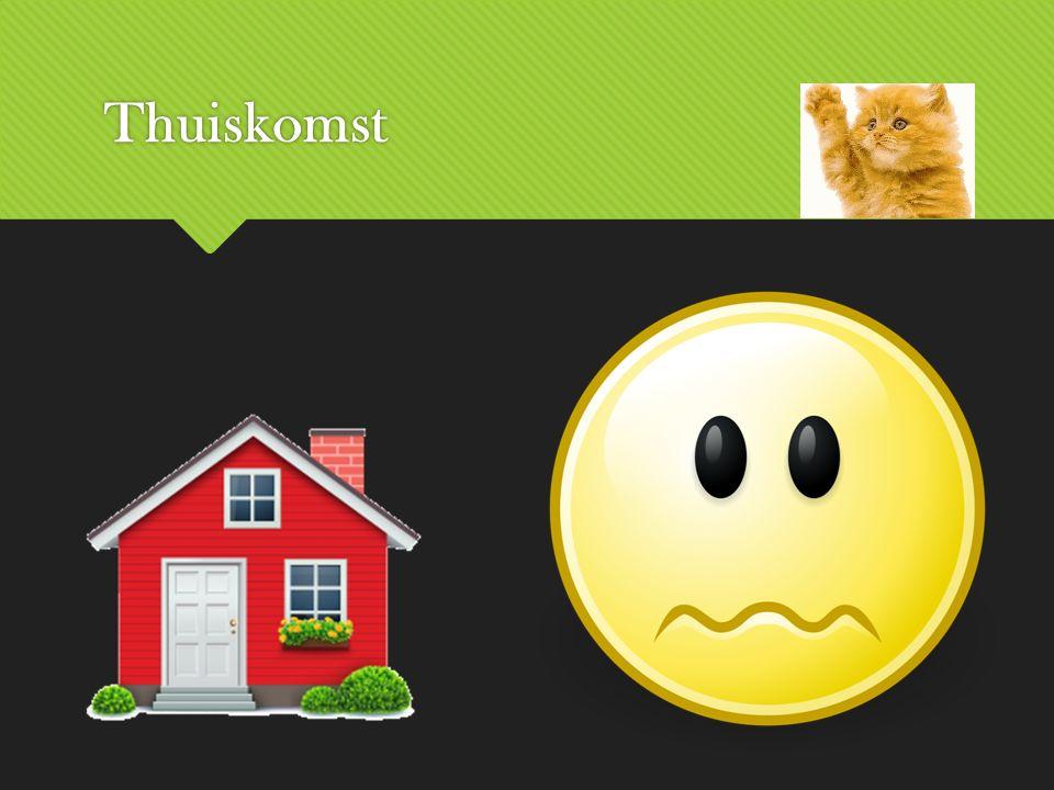 Thuiskomst