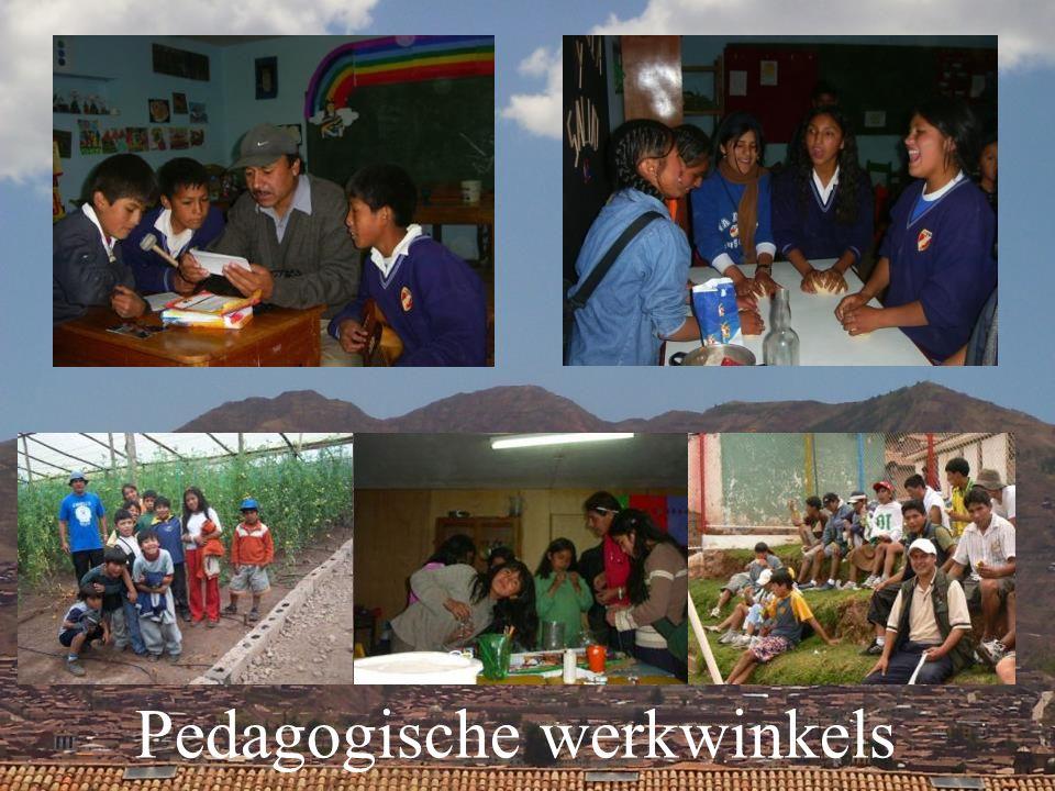 Pedagogische werkwinkels