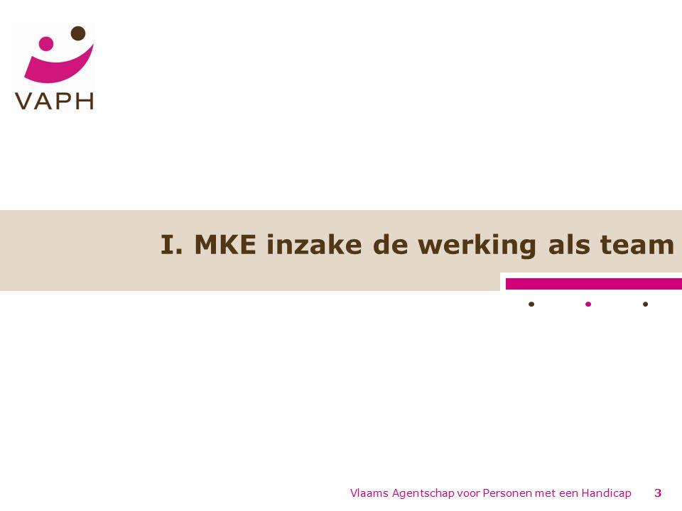 Vlaams Agentschap voor Personen met een Handicap3 I. MKE inzake de werking als team