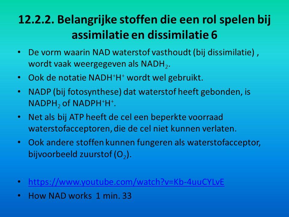 12.2.2. Belangrijke stoffen die een rol spelen bij assimilatie en dissimilatie 6 De vorm waarin NAD waterstof vasthoudt (bij dissimilatie), wordt vaak