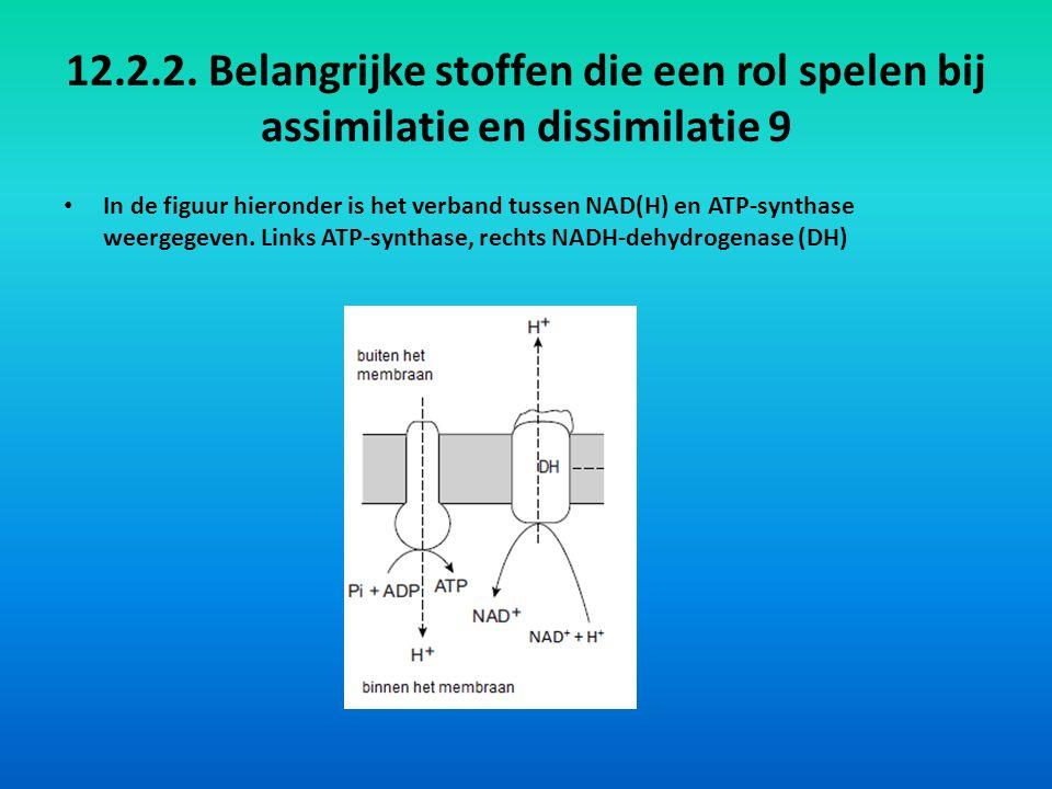 12.2.2. Belangrijke stoffen die een rol spelen bij assimilatie en dissimilatie 9 In de figuur hieronder is het verband tussen NAD(H) en ATP-synthase w