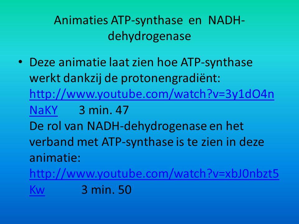 Animaties ATP-synthase en NADH- dehydrogenase Deze animatie laat zien hoe ATP-synthase werkt dankzij de protonengradiënt: http://www.youtube.com/watch