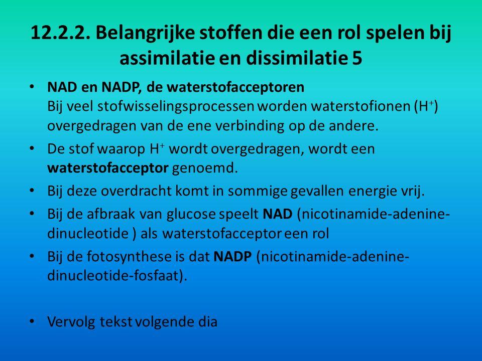 12.2.2. Belangrijke stoffen die een rol spelen bij assimilatie en dissimilatie 5 NAD en NADP, de waterstofacceptoren Bij veel stofwisselingsprocessen