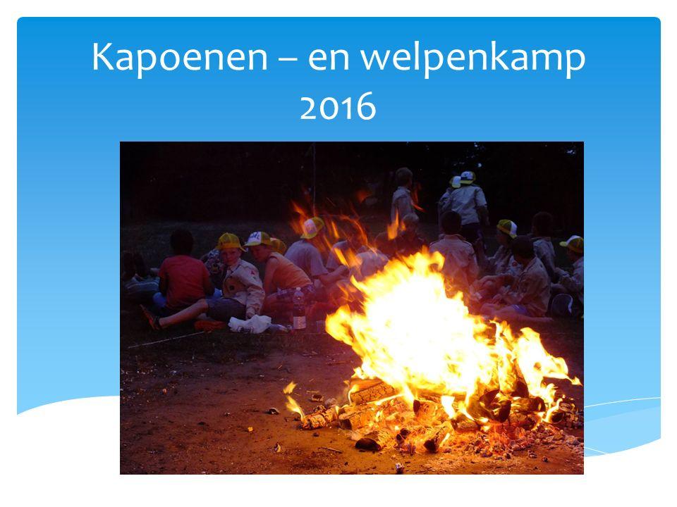  Dongen (Nederland)  Dichtbij Tilburg  Een uurtje rijden Buitenlands kamp