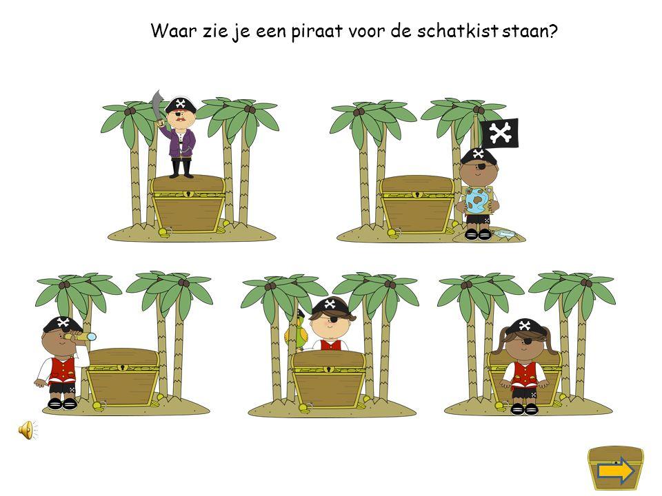 Waar zie je een piraat links naast de schatkist?
