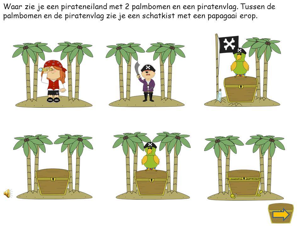 Waar zie je een pirateneiland met 4 palmbomen en tussen de palmbomen staat een piraat met een zwaard in zijn hand.