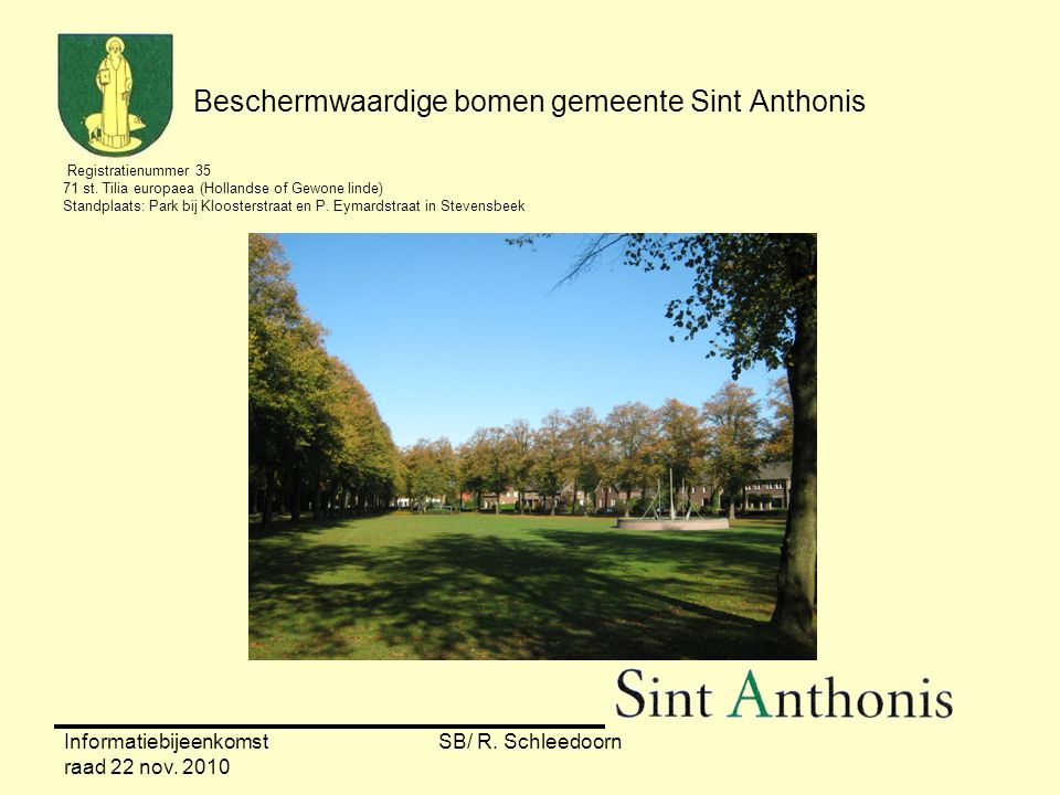 Informatiebijeenkomst raad 22 nov. 2010 SB/ R. Schleedoorn Beschermwaardige bomen gemeente Sint Anthonis Registratienummer 35 71 st. Tilia europaea (H