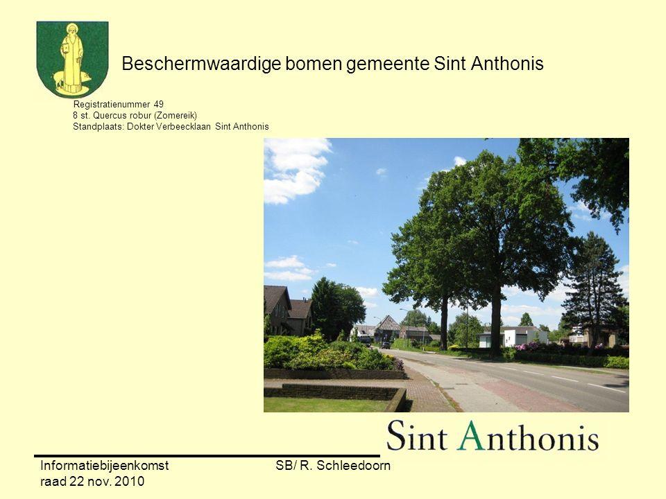 Informatiebijeenkomst raad 22 nov. 2010 SB/ R. Schleedoorn Beschermwaardige bomen gemeente Sint Anthonis Registratienummer 49 8 st. Quercus robur (Zom