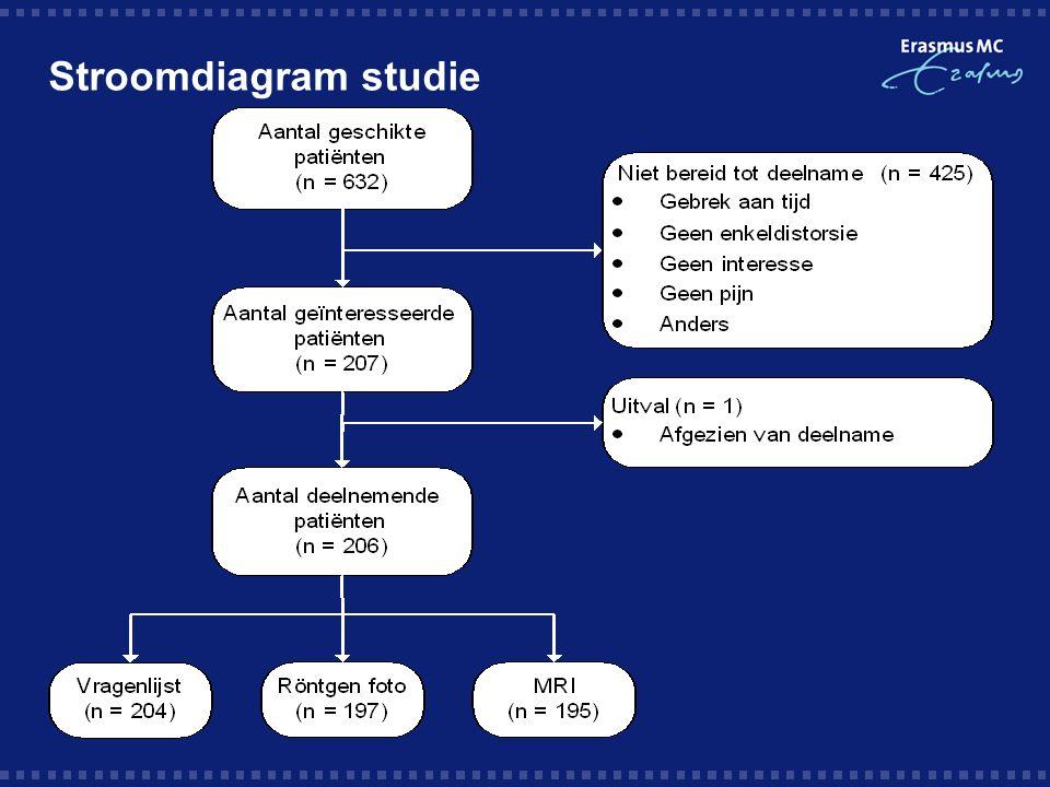 Stroomdiagram studie