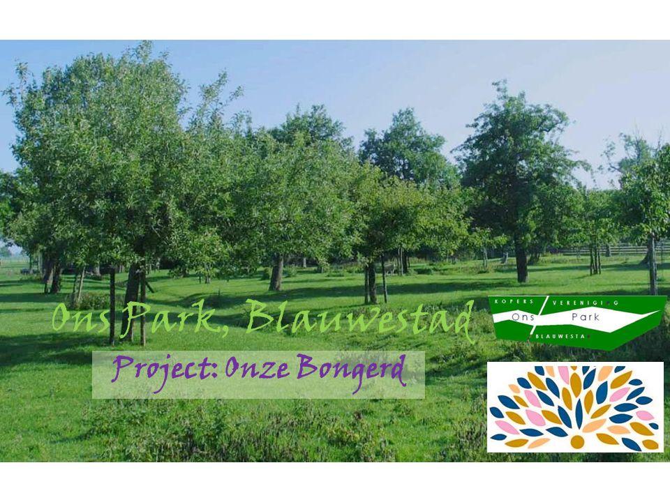 Het Park Blauwestad Eerste bewoners in 2007, dit is oorspronkelijke beeld