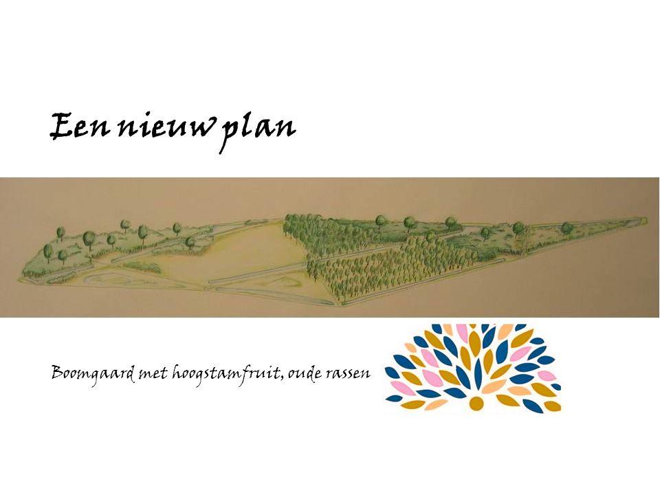 Een nieuw plan Boomgaard met hoogstamfruit, oude rassen