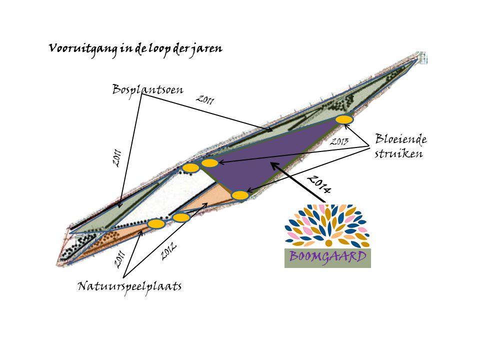 Bosplantsoen Natuurspeelplaats BOOMGAARD Vooruitgang in de loop der jaren 2011 2012 2014 Bloeiende struiken 2013