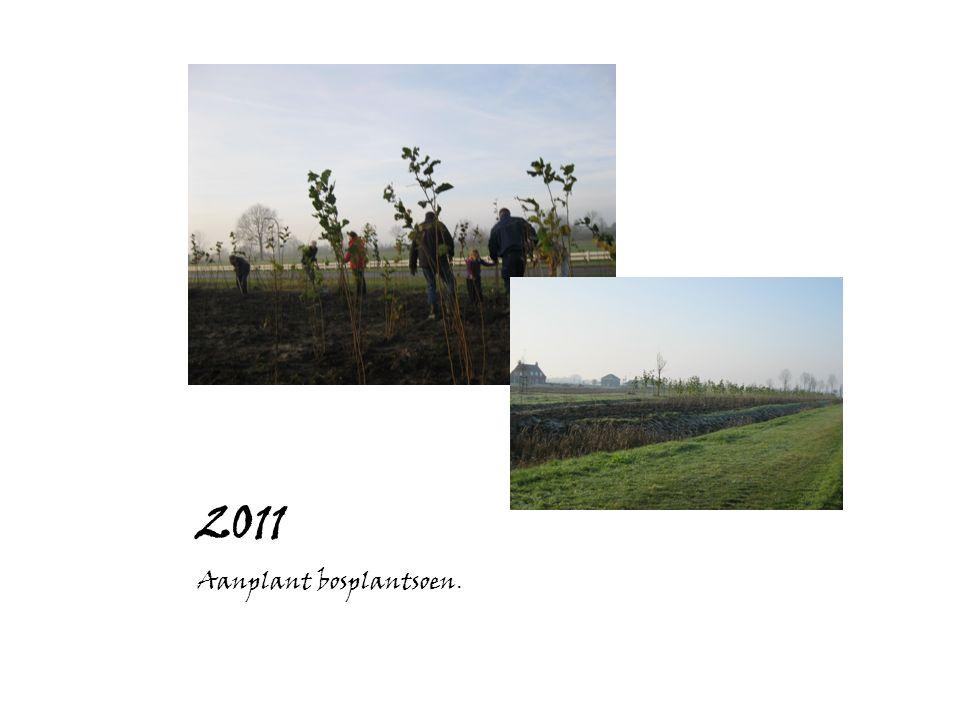 2011 Aanplant bosplantsoen.