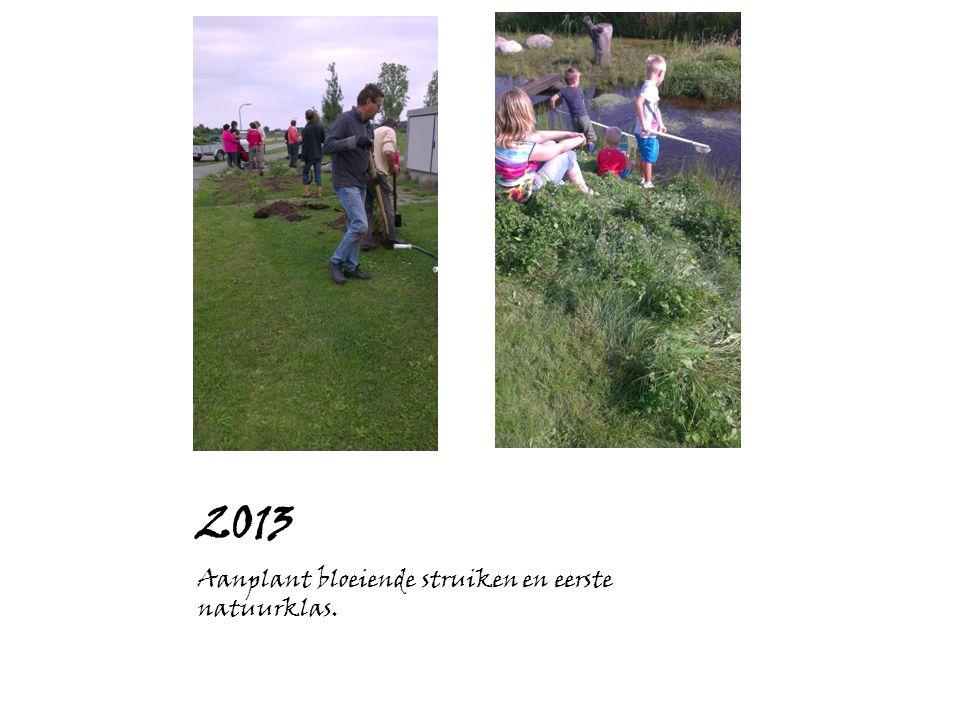 2013 Aanplant bloeiende struiken en eerste natuurklas.