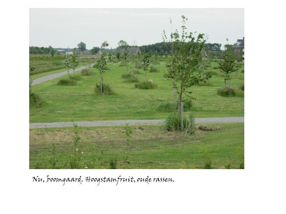 2011 116 bomen geplant, waarvan na 1 jaar ruim 40 dood en vervangen.