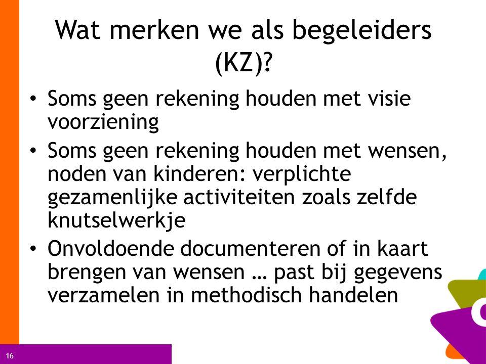 16 Wat merken we als begeleiders (KZ).