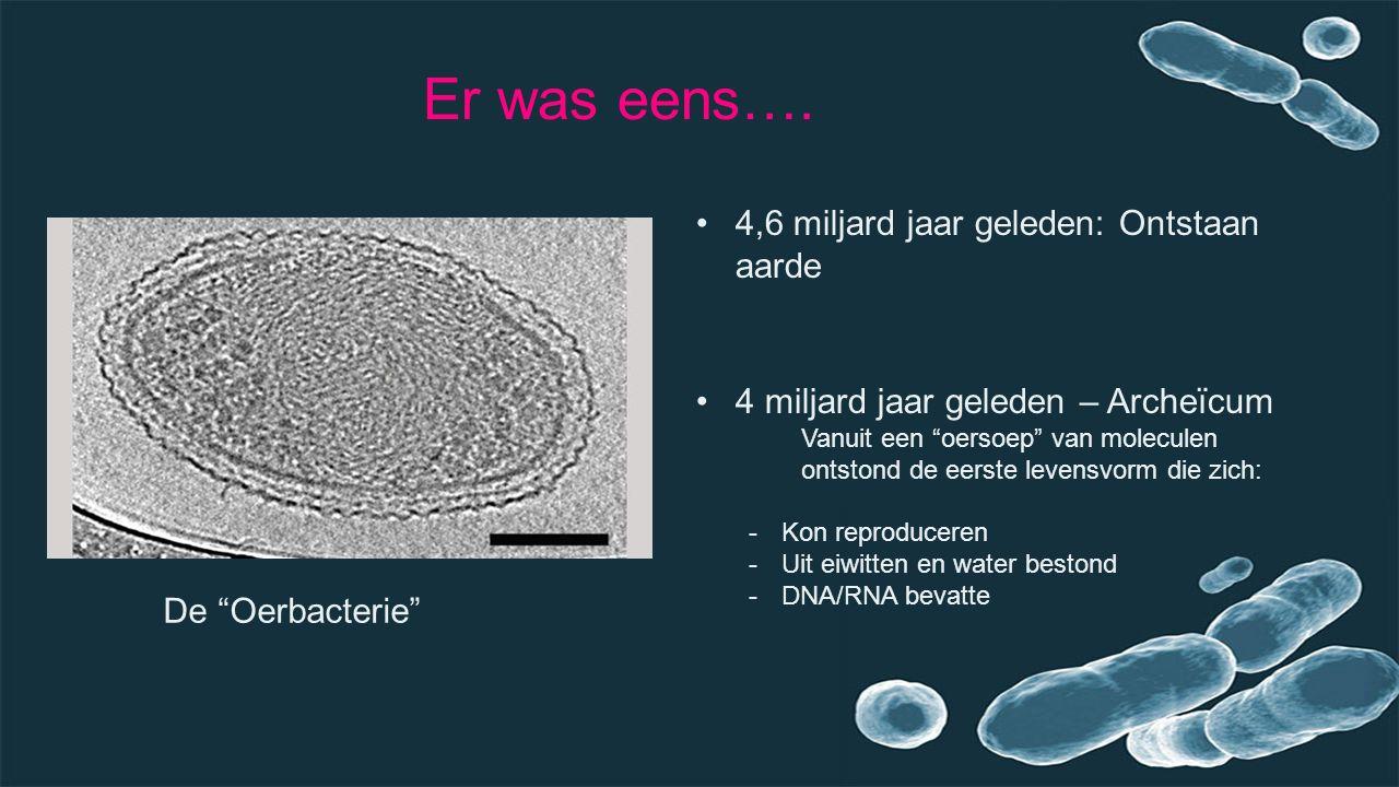 """Er was eens…. 4,6 miljard jaar geleden: Ontstaan aarde 4 miljard jaar geleden – Archeïcum Vanuit een """"oersoep"""" van moleculen ontstond de eerste levens"""