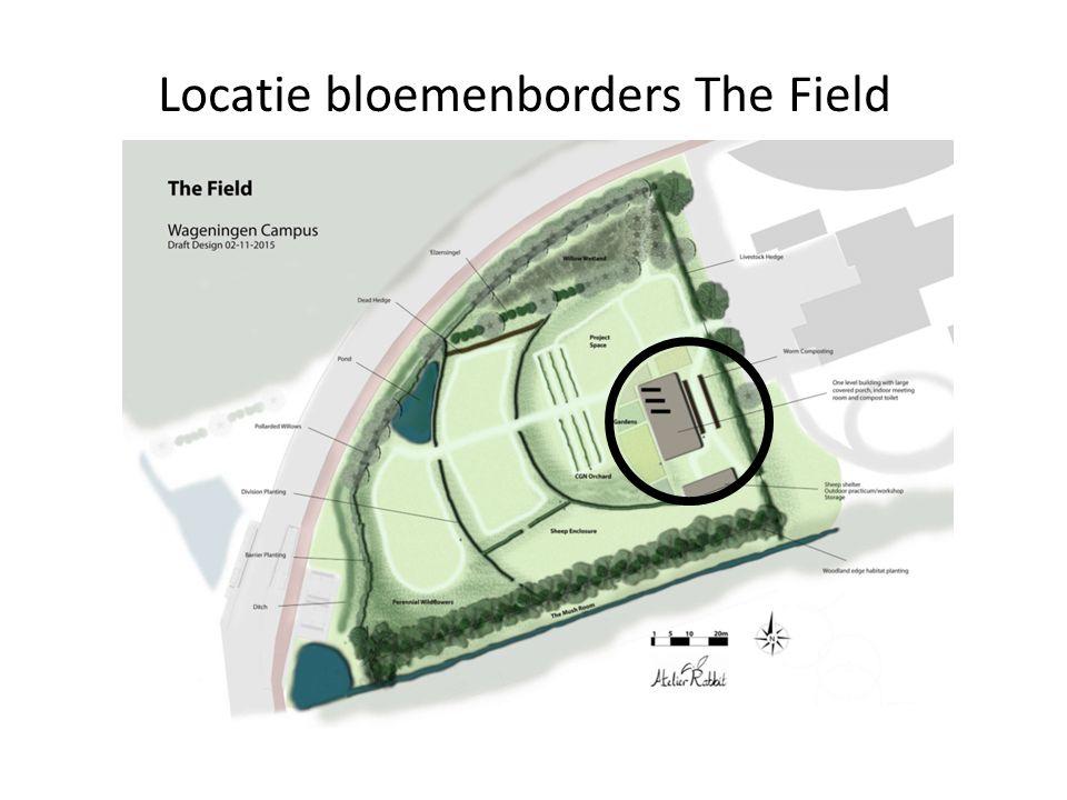 Locatie bloemenborders The Field