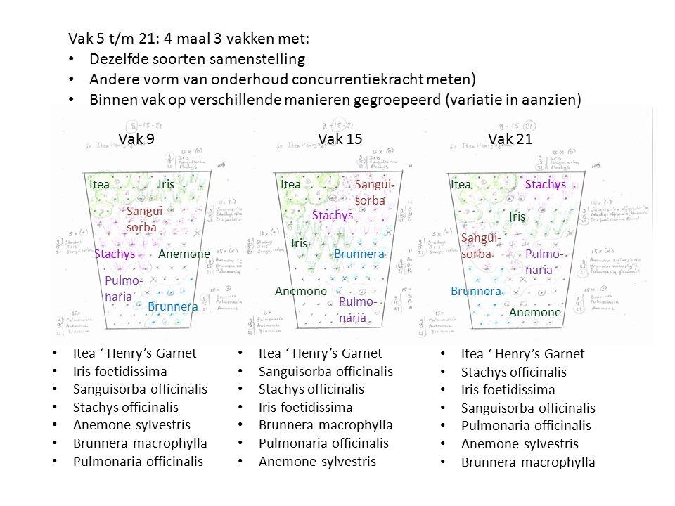 Vak 5 t/m 21: 4 maal 3 vakken met: Dezelfde soorten samenstelling Andere vorm van onderhoud concurrentiekracht meten) Binnen vak op verschillende mani