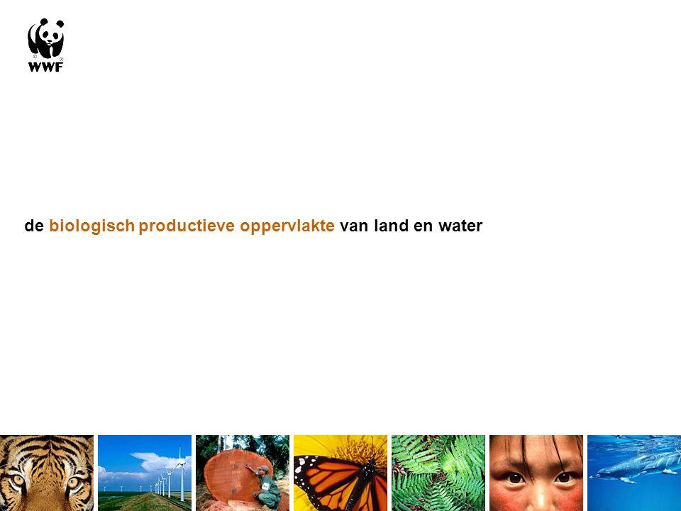 de biologisch productieve oppervlakte van land en water