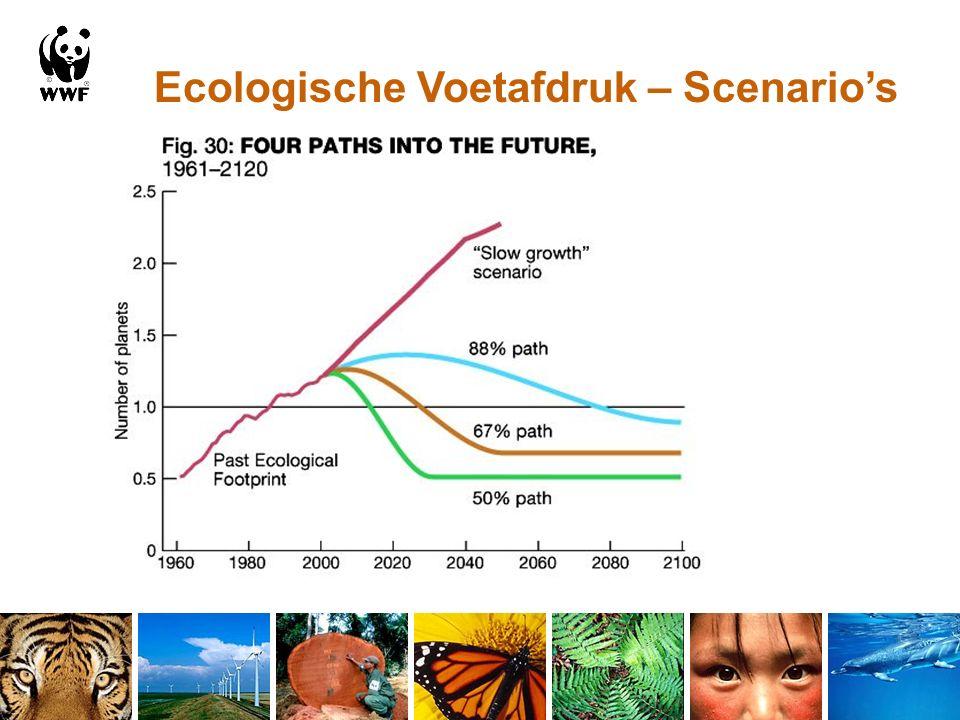 Ecologische Voetafdruk – Scenario's