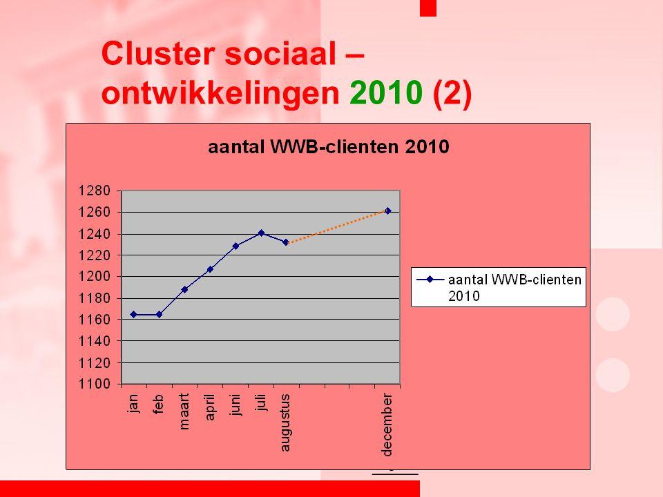 Cluster sociaal – ontwikkelingen 2010 (2)