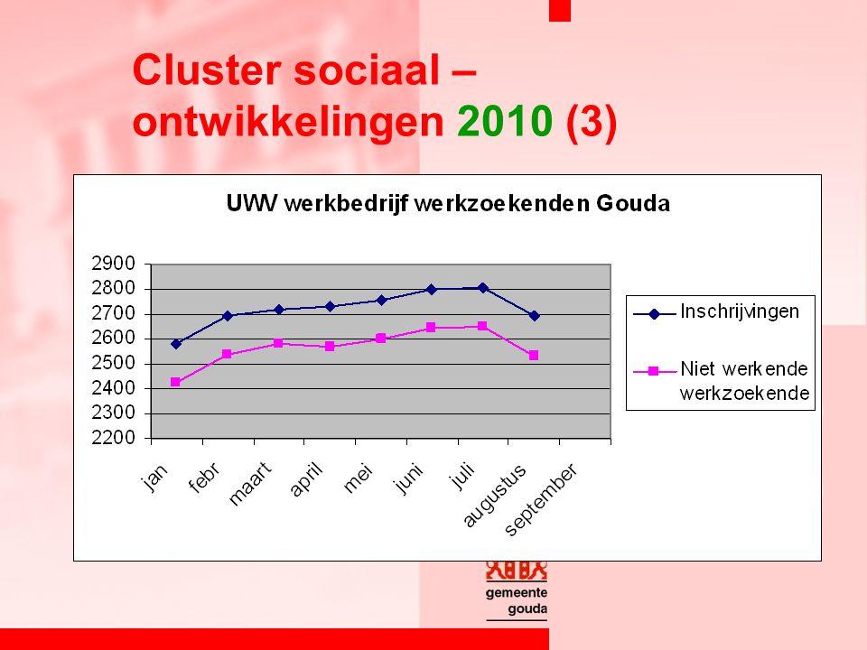 Cluster sociaal – ontwikkelingen 2010 (3)