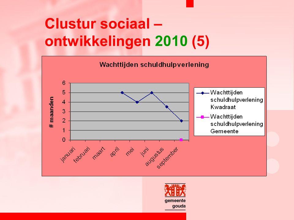 Clustur sociaal – ontwikkelingen 2010 (5)