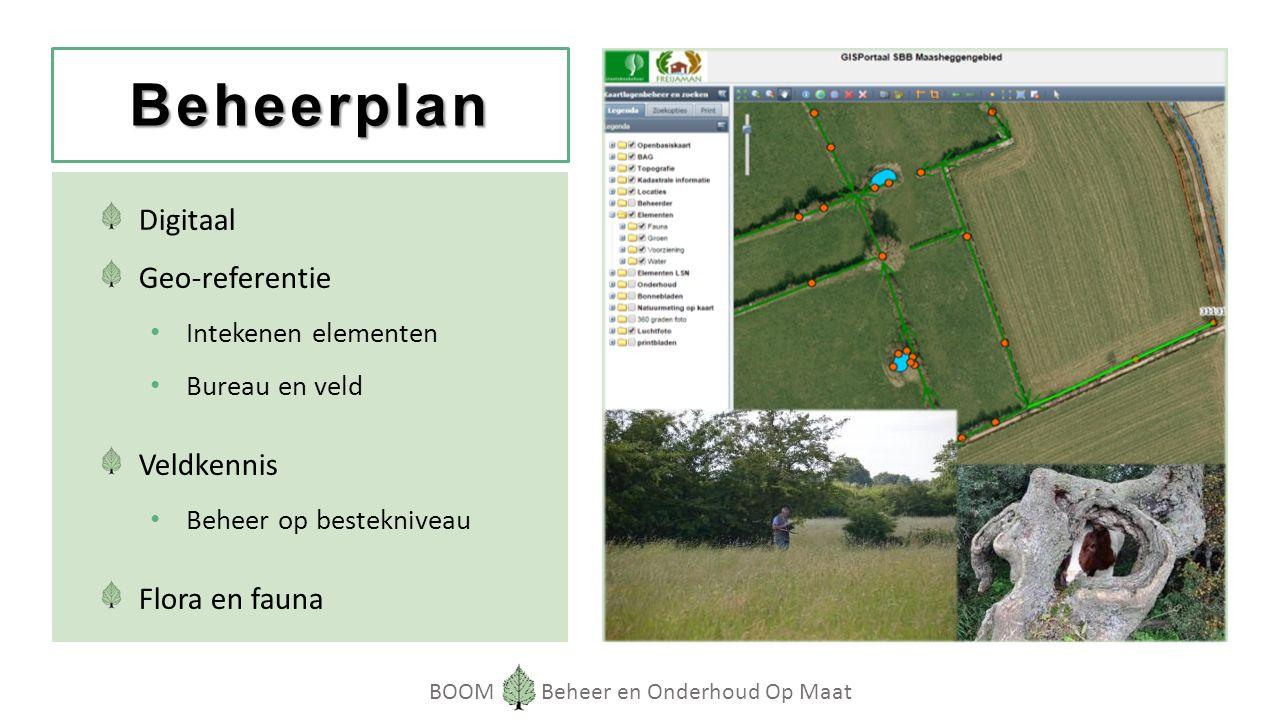 BOOM Beheer en Onderhoud Op Maat Beheerplan Digitaal Geo-referentie Intekenen elementen Bureau en veld Veldkennis Beheer op bestekniveau Flora en fauna
