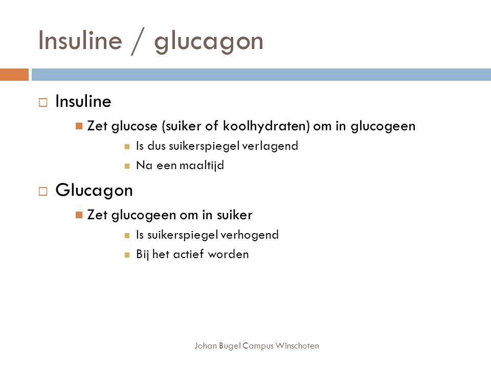 Johan Bugel Campus Winschoten Insuline / glucagon  Insuline Zet glucose (suiker of koolhydraten) om in glucogeen Is dus suikerspiegel verlagend Na een maaltijd  Glucagon Zet glucogeen om in suiker Is suikerspiegel verhogend Bij het actief worden