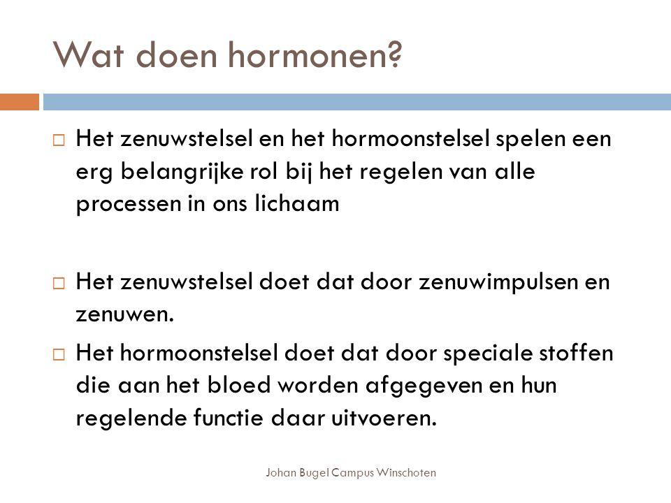 Johan Bugel Campus Winschoten Wat doen hormonen.